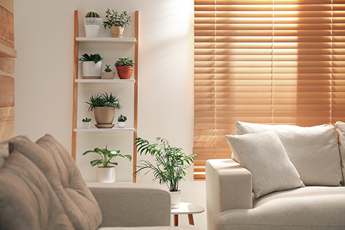 Ladder shelf with plants and decorative items in modern lounge with wooden blinds